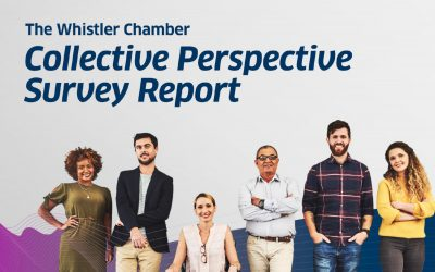 2019/20 Collective Perspective Survey Report